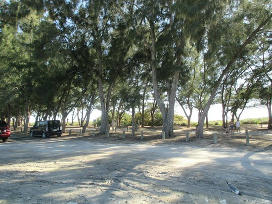Coquina Beach: ample parking ..but no signs  about alcohol ban