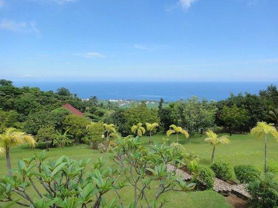 The Hamsa Resort : The view.
