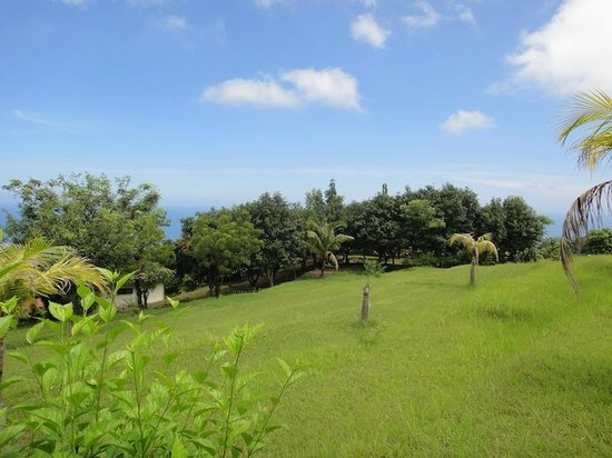 The Hamsa Resort: the Hamsa garden