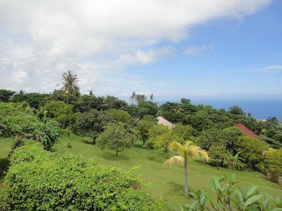 The Hamsa Resort: the view.
