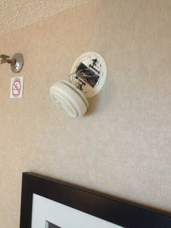 Sheraton on the Falls: The state of my fire detector in the new room