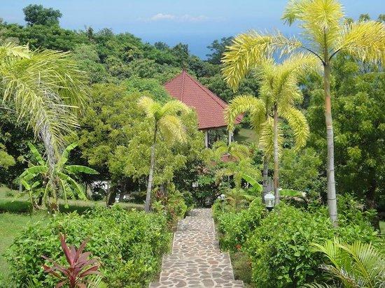 The Hamsa Bali Resort: the yoga place