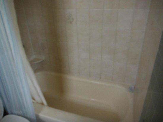 Glenwood Springs Inn : Clean, no molds anywhere