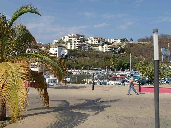 Santa Cruz Bay: condos above the marina