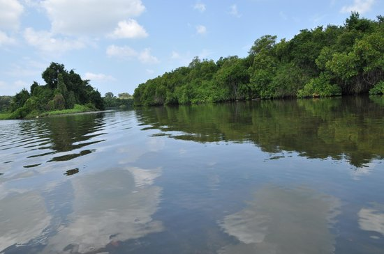 Dutch Bay Resorts: Along the Mighty Kala Oya