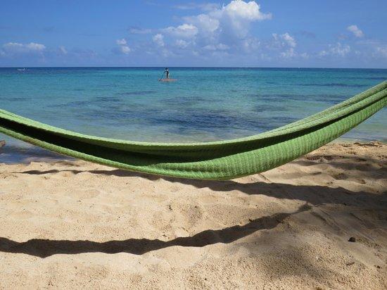 Yemaya Island Hideaway & Spa : Hammock on the beach