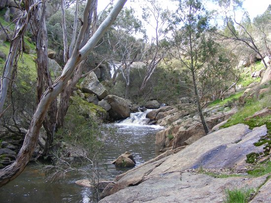 Eldorado, Austrália: Reedy Creek