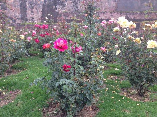 Convento de Santo Domingo: Beautiful gardens