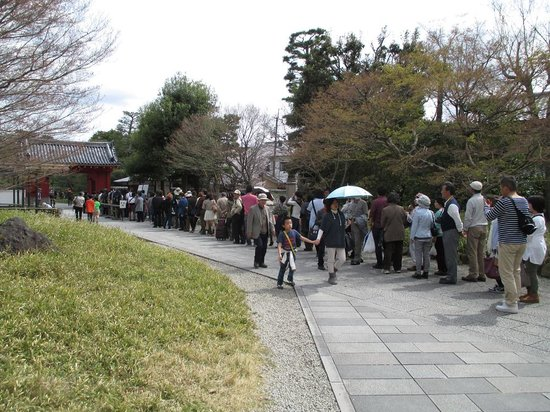 Byodoin Temple: 初日(3日)の行列