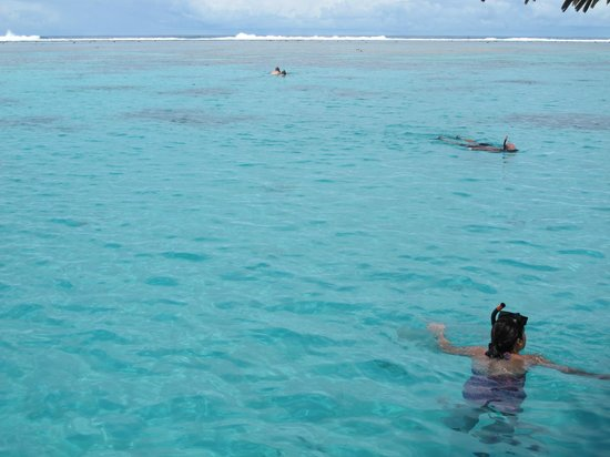Captain Tama's Lagoon Cruizes : Snorkelling off the glass-bottomed boat