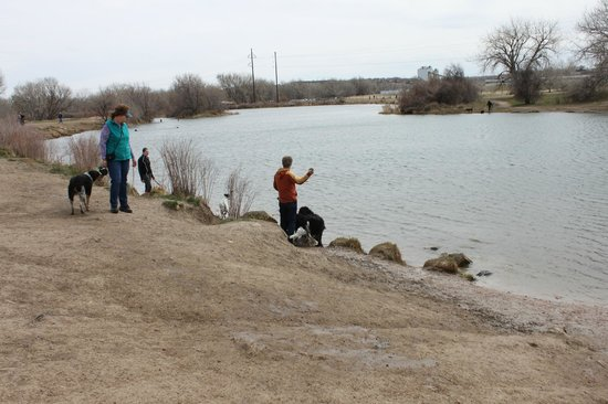 Chatfield State Park : Large ponds