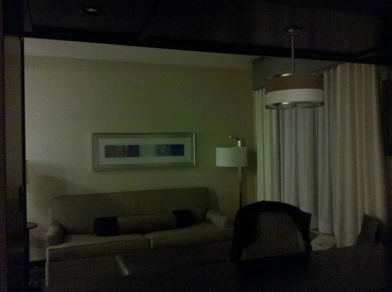 Hampton Inn & Suites Denver/Airport-Gateway Park: Not the best picture, the room is much better in person