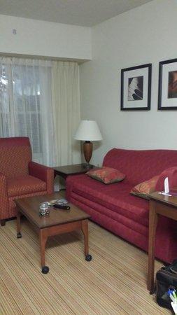 Residence Inn Anaheim Hills Yorba Linda: Living area