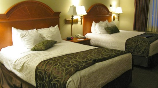 Centerstone Plaza Hotel Soldiers Field - Mayo Clinic Area : Double Queen Room