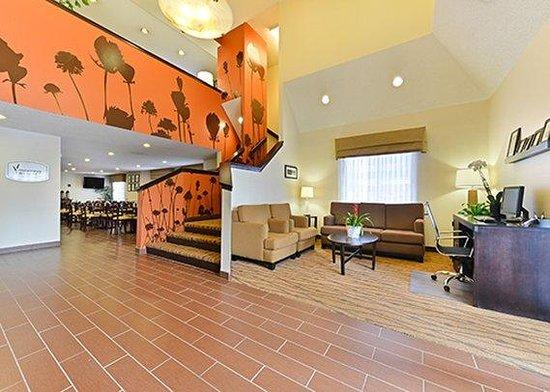 Sleep Inn & Suites : lobby