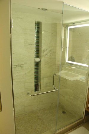 Loews Miami Beach Hotel : Banheiro