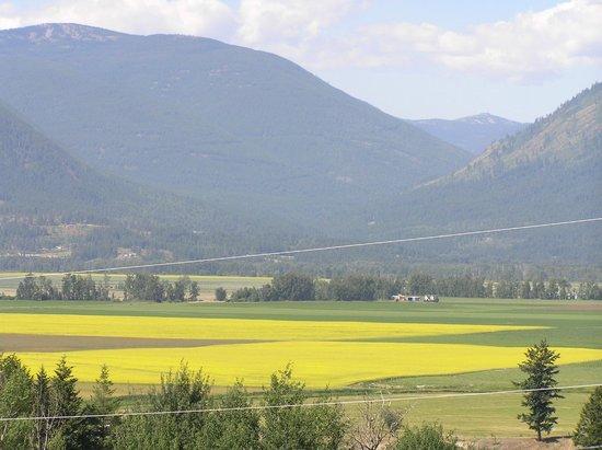 Pheasants Run B&B: View of the valley