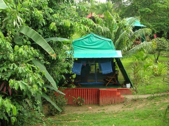 Hotel Las Caletas Lodge: Our Tent Cabin