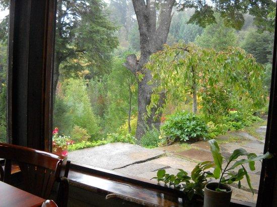 Bellevue Salon de Ta & Queso Pan y Vino: Otoño con lluvia