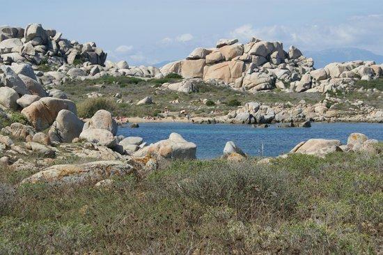 Résidence Odalys Mare e Monte : iles Lavezzi