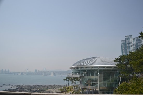 APEC Naru Park: APEC and the diamond bridge as seen from the light house viewing deck.