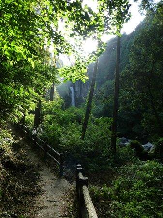 Inukai Fall: 遊歩道からの眺め