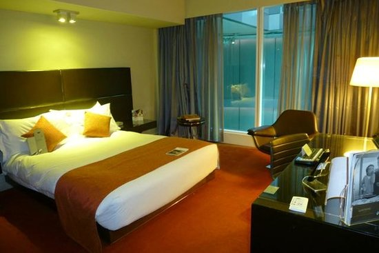 Park Plaza Westminster Bridge London : Room was a lot darker than it looked in the picture.