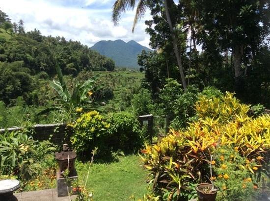 Pondok Batur Indah: uitzicht vanaf je kamer