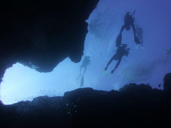 Ticabo Diving Centre: la cathédrale