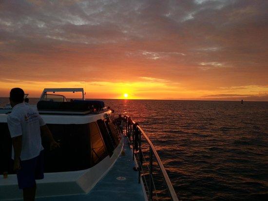 Ocean Sports Sunset Champagne Sail : Hawiian Sunset!!!