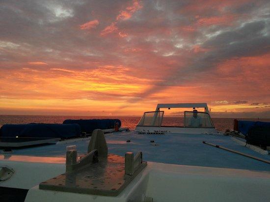Ocean Sports Sunset Champagne Sail : Hawaiian Sunset!!!