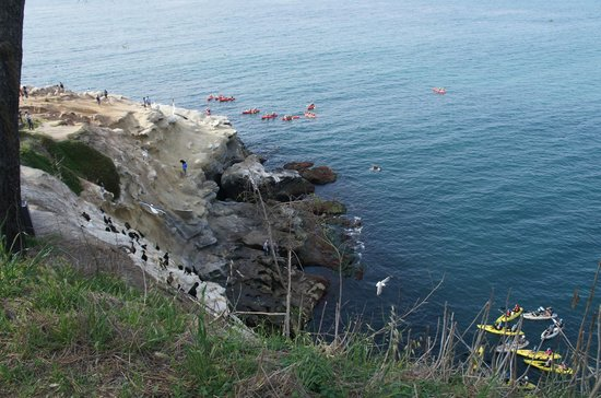 La Jolla Kayak : View from the beach