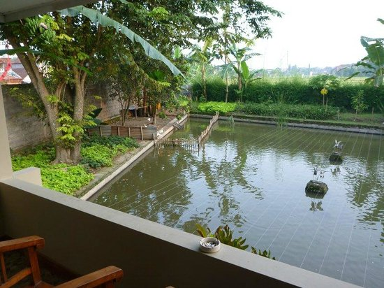 Pan Family Hotel: view from our balcony