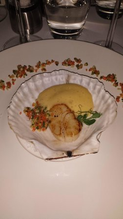 Sirocco Restaurant : coquille st Jacques