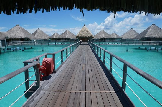 The St. Regis Bora Bora Resort : Bungalows