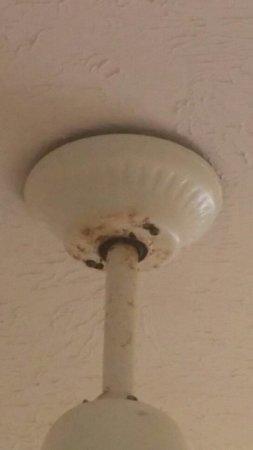 Whitsunday Apartments Hamilton Island: Horrible ceiling fan