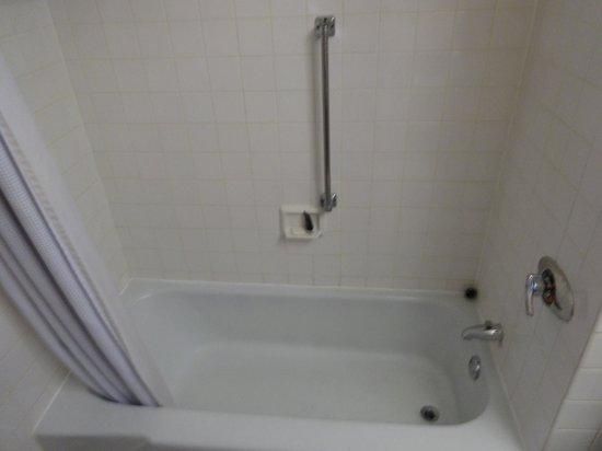 City Place   Downtown St. Louis: Soap Scum Shower!