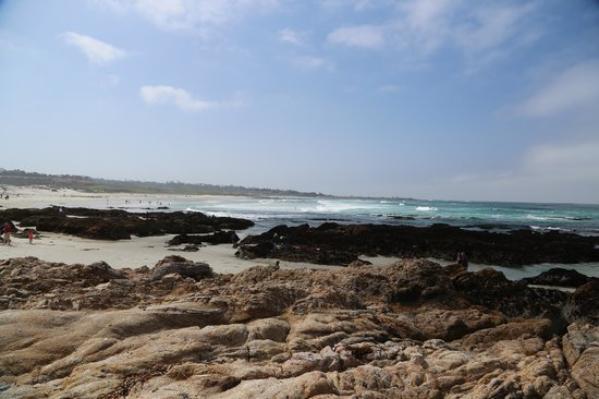 Asilomar State Beach: View of the beach