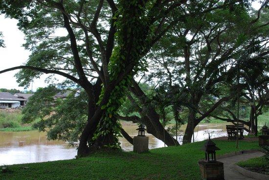 Baan Nam Ping Riverside Village: Our Trees