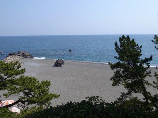 Ryoma Sakamoto Bronze Statue: 像から少し階段を下りると海が見える