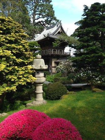 Japanese Tea Garden : Japanese Gardens