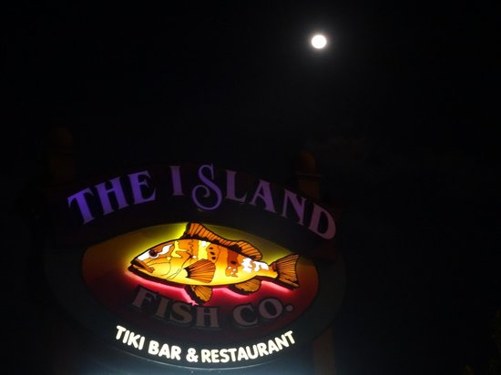 Island Fish Company : The Island and the moon