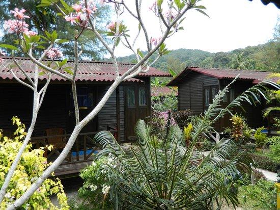 Bayu Dive Lodge: Garden area between chalets
