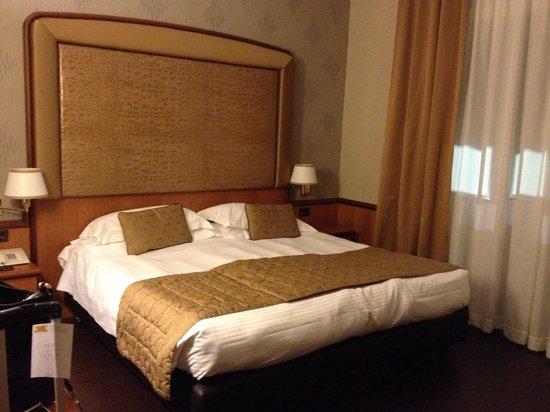 Hotel Manin: My room