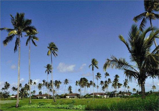 The Residence Zanzibar: General View