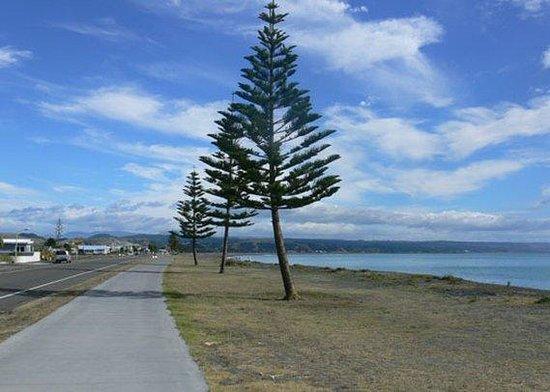 Econo Lodge Napier : Beach
