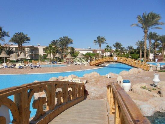 Radisson Blu Resort, Sharm El Sheikh : Очень большая и ухоженная террирория
