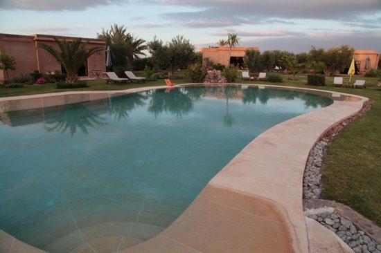 Oasis Jena : La piscine