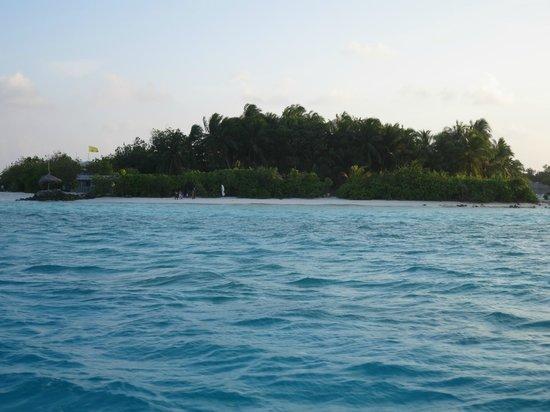 Happy Life Maldives Lodge : Private beach