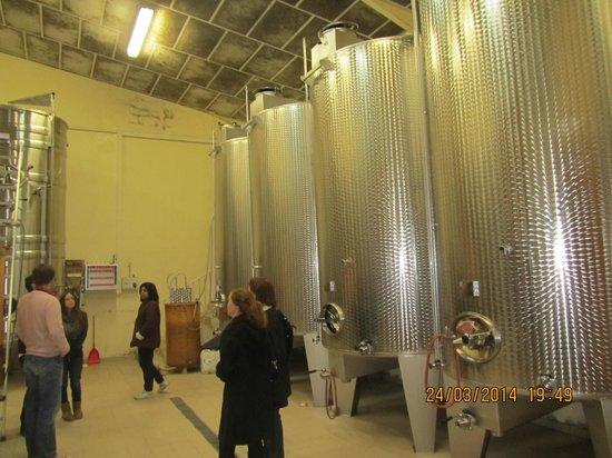 Paris Wine Day Tours: The Modern Barrels